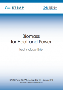 Biomass for Heat and Power Technology Brief