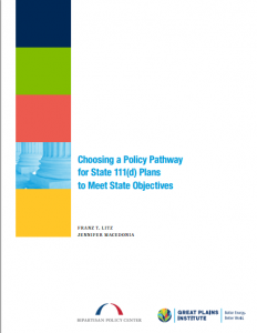 Choosing a Policy Pathway for State 111d Plans to Meet State Objectives
