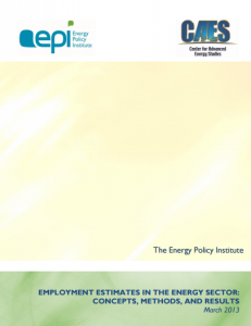 Employment Estimates in the Energy Sector: Concepts, Methods, and Results