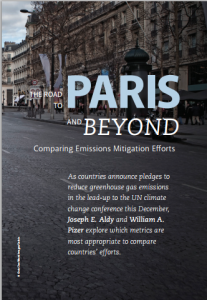 The Road to Paris and Beyond: Comparing Emissions Mitigation Efforts