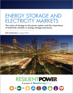 Energy Storage and Electricity Markets