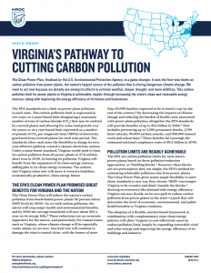 Virginia's Pathway to Cutting Carbon Pollution