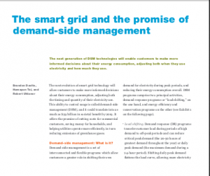 The Smart Grid and the Promise of Demand-Side Management