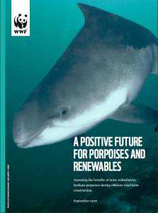 A Positive Future For Porpoises And Renewables