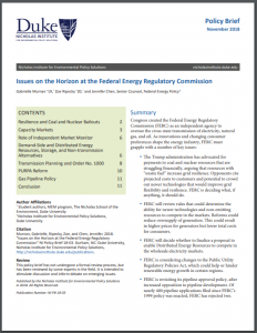 Issues on the Horizon at the Federal Energy Regulatory Commission