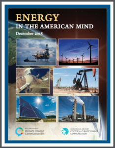 Energy in the American Mind