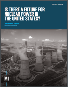 Is There a Future for Nuclear Power in the United States?