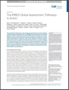 The IPBES Global Assessment: Pathways to Action