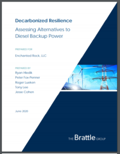 Decarbonized Resilience