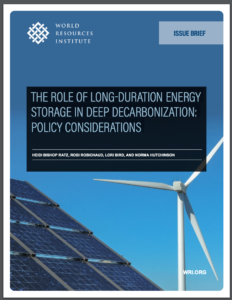The Role of Long-Duration Energy Storage in Deep Decarbonization: Policy Considerations