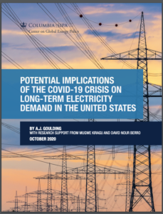 Potential Implications of the COVID-19 Crisis on Long-Term Electricity Demand in the United States