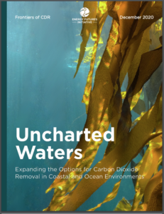 Uncharted Waters: Expanding the Options for Carbon Dioxide Removal in Coastal and Ocean Environments