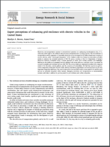 Expert perceptions of enhancing grid resilience with electric vehicles in the United States