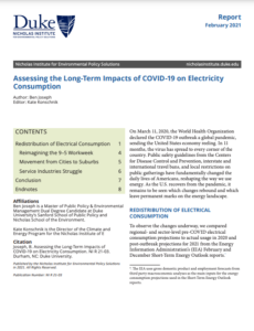 Assessing the Long-Term Impacts of COVID-19 on Electricity Consumption