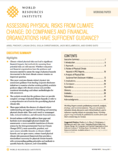 Assessing Physical Risks from Climate Change: Do Companies and Financial Organizations Have Sufficient Guidance?