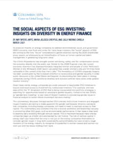 The Social Aspects of ESG Investing: Insights on Diversity in Energy Finance