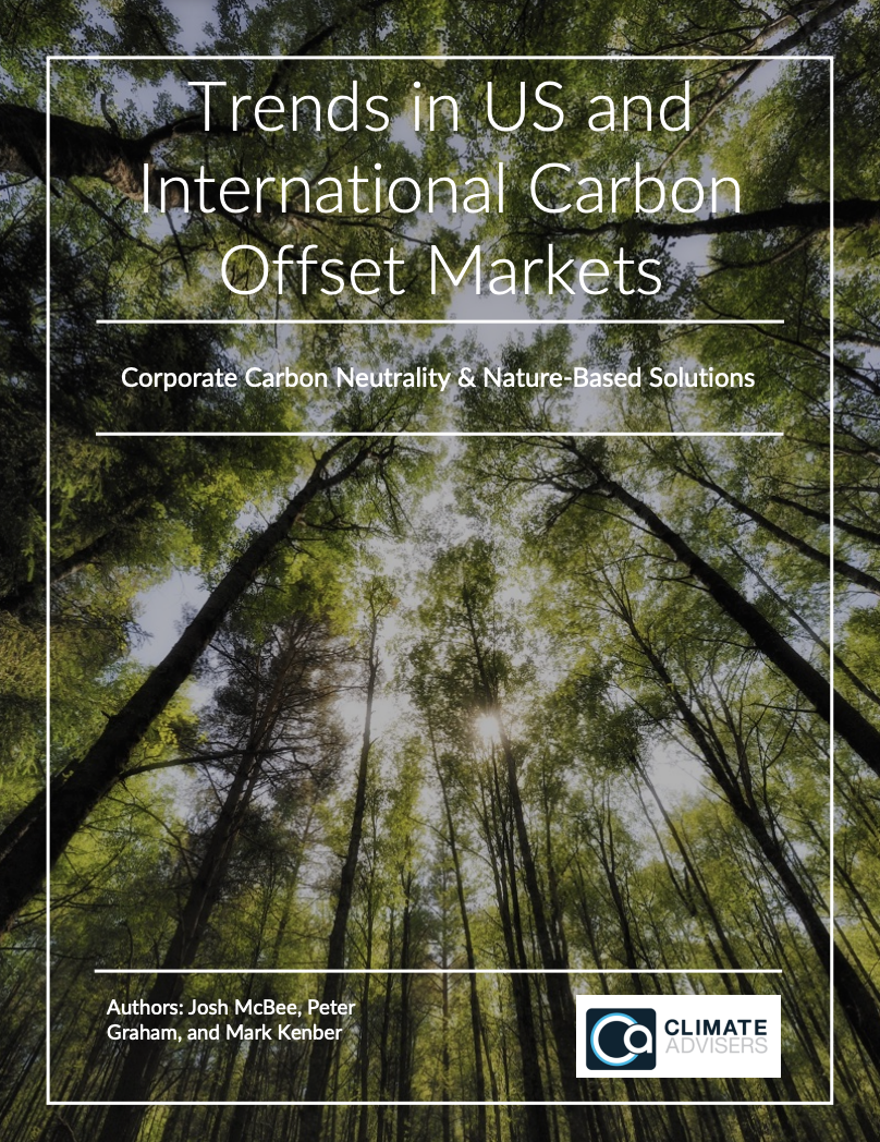 Trends in US and International Carbon Offset Markets