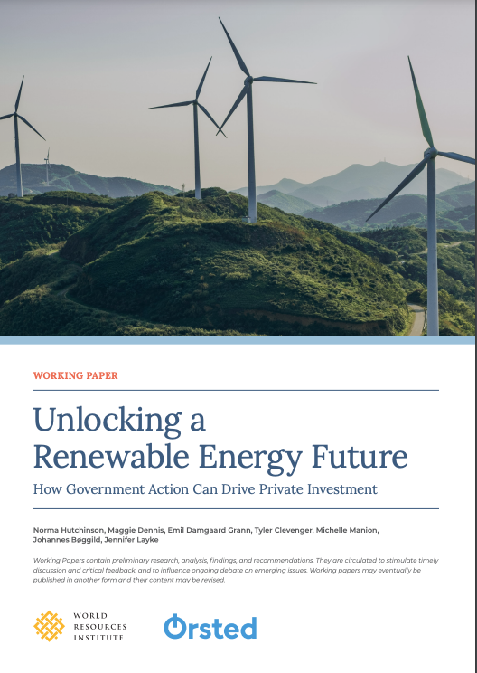 Unlocking a Renewable Energy Future: How Government Action Can Drive Private Investment