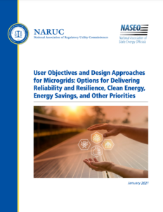 User Objectives and Design Approaches for Microgrids: Options for Delivering Reliability and Resilience, Clean Energy, Energy Savings, and Other Priorities