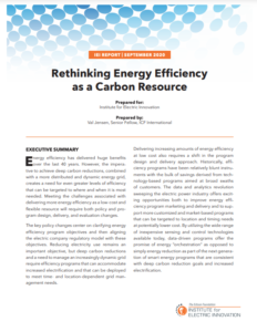 Rethinking Energy Efficiency as a Carbon Resource