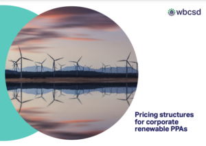 Pricing Structures for Corporate Renewable PPAs