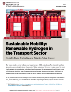 Sustainable Mobility: Renewable Hydrogen in the Transport Sector