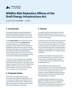 Wildfire Risk Reduction: Effects of the Draft Energy Infrastructure Act
