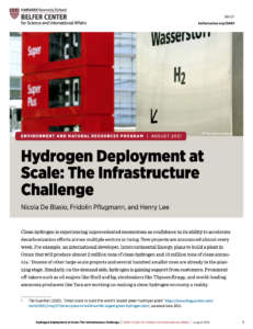 Hydrogen Deployment at Scale: The Infrastructure Challenge