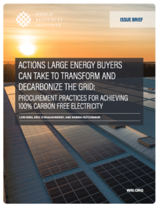 Actions Large Energy Buyers Can Take to Transform and Decarbonize the Grid: Procurement Practices for Achieving 100% Carbon Free Electricity