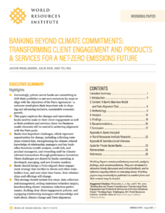 Banking Beyond Climate Commitments: Transforming Client Engagement and Products & Services for a Net-Zero Emissions Future
