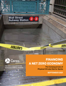 Financing a Net Zero Economy: The Consequences of Physical Climate Risk for Banks