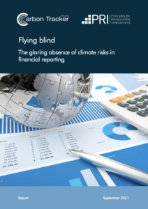 Flying Blind: The Glaring Absence of Climate Risks in Financial Reporting