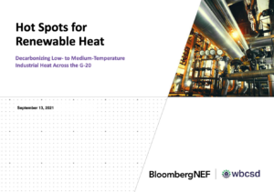 Hot Spots for Renewable Heat: Decarbonizing Low- to Medium-Temperature Industrial Heat Across the G-20