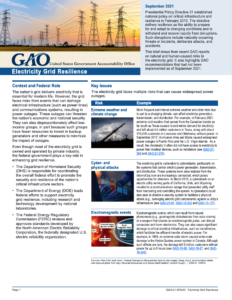 Electricity Grid Resilience