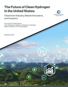 The Future of Clean Hydrogen in the United States: Views from Industry, Market Innovators, and Investors