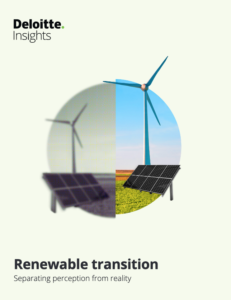 Renewable Transition: Separating Perception From Reality